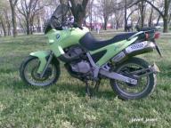 post-16894-1239387244_thumb.jpg