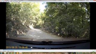 Forestier_1.thumb.jpg.8b9b9b4fa52aec23f155ca22be020759.jpg