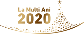 Successful-2020_rom-2-1024x424.png