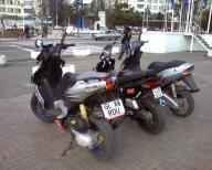post-12750-1173036725_thumb.jpg